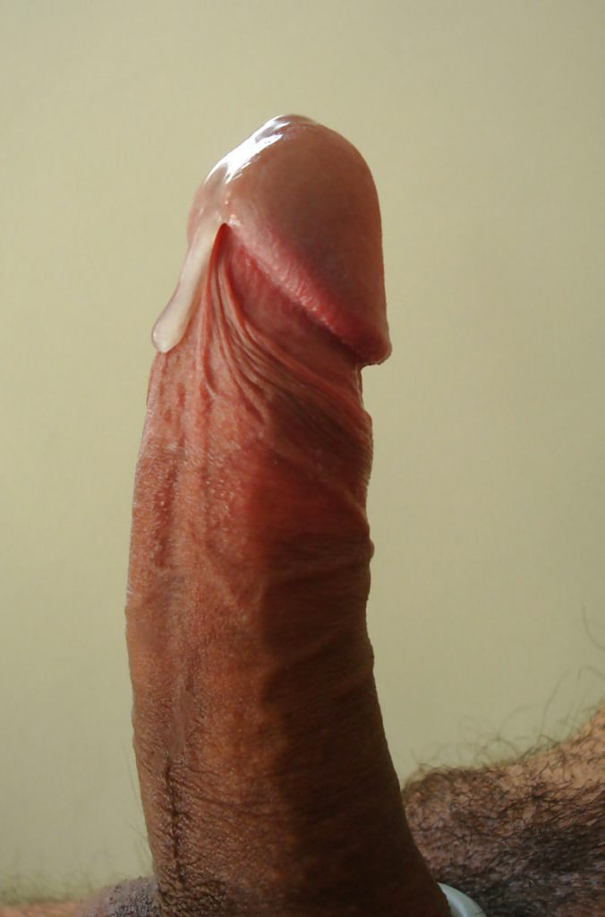 Juicy Big Cocks In My Face Please 11